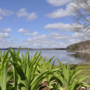 Poconos Spring Break