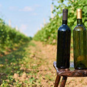 Poconos wineries